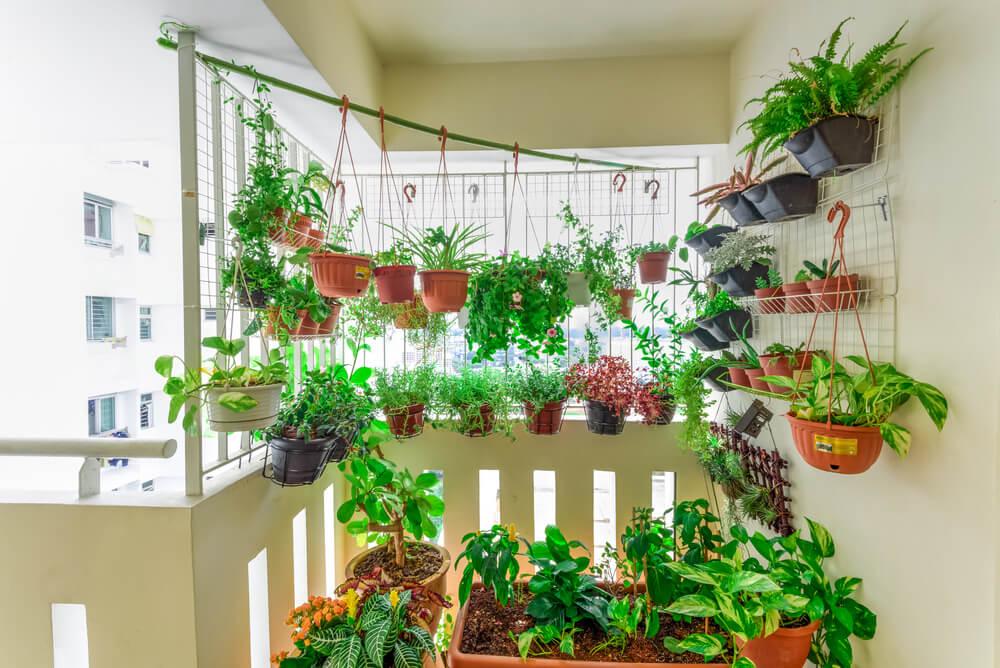 Modern balkon met hangplanten