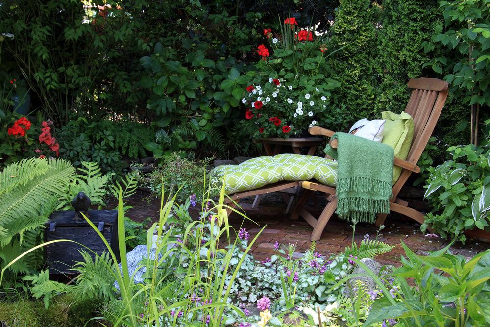 Groen hoekje met klimplanten