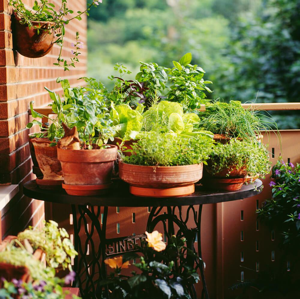 Plantentafeltje op balkon