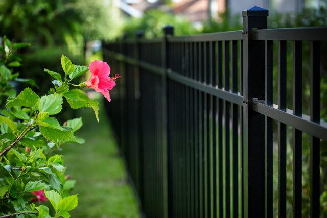 Dubbelstaafmatten in de tuin: modern en minimalistisch
