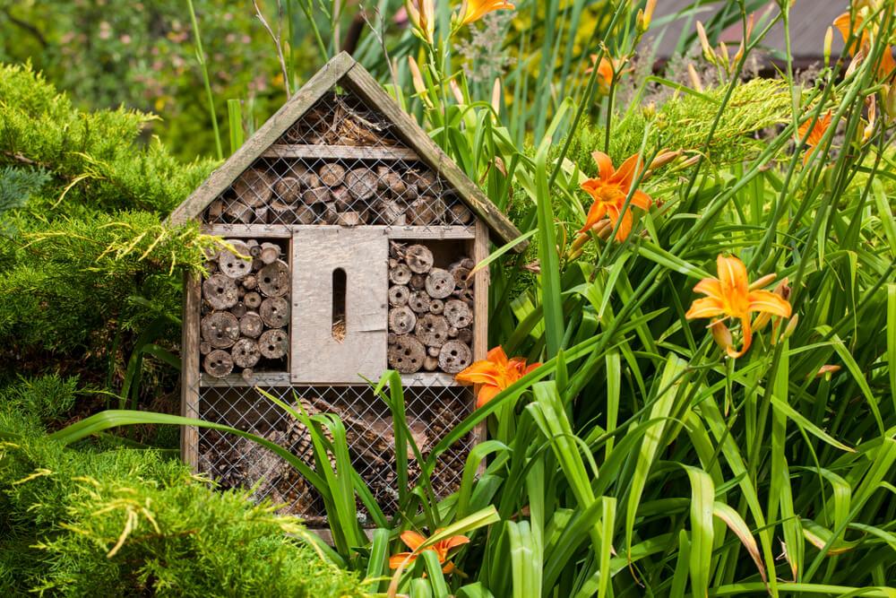 Meer insecten in de tuin? Tips voor een insectenhotel!
