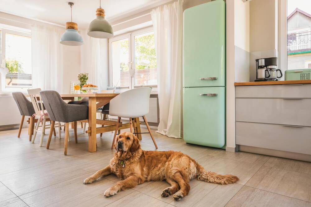 Prachtig: een koelkast in pastel in de keuken
