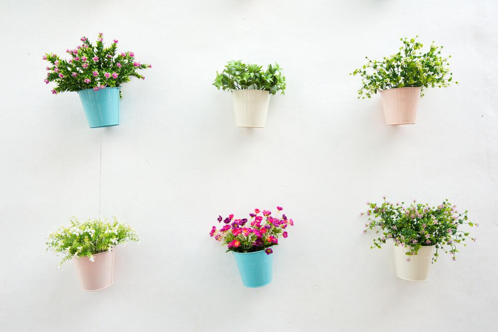 Een muur met planten: we delen de mooiste tips!