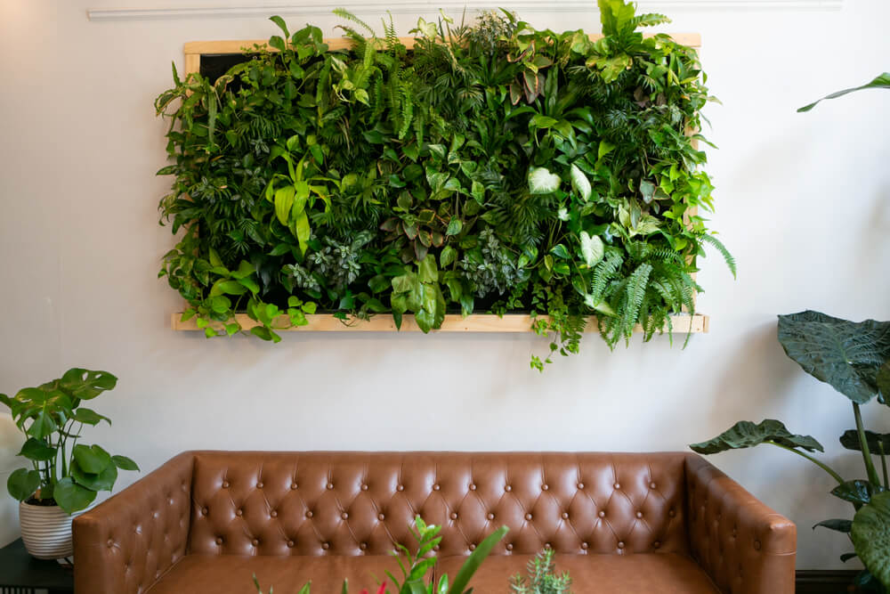 Botanisch wonen met een muur vol planten