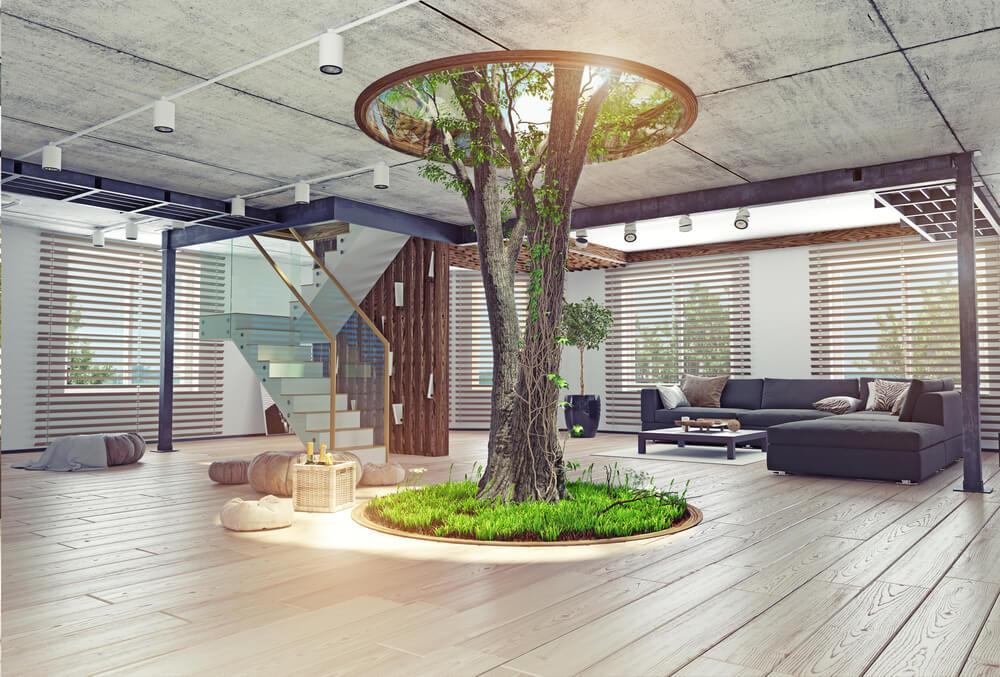 Een boom binnenshuis: lees al onze tips!