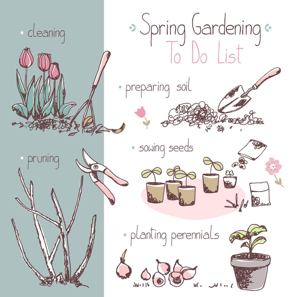Hoe maak je jouw tuin klaar voor de lente? 11 tips!