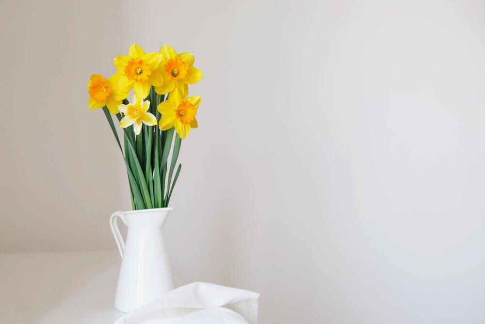 Dít zijn de mooiste bloemen om dit voorjaar in huis te halen