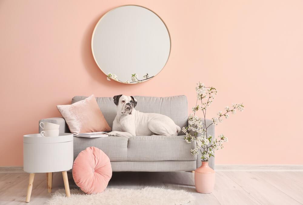 8x Dít zijn de leukste roze woonaccessoires + shop meteen mee!