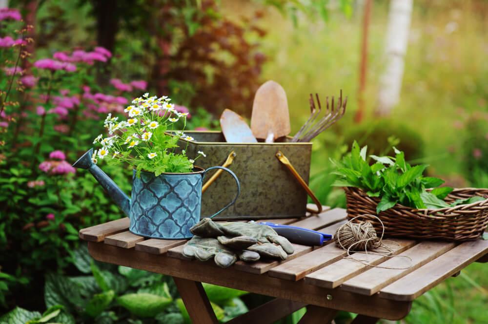 Tuintips voor juni: wat kun je in de maand juni in de tuin doen?