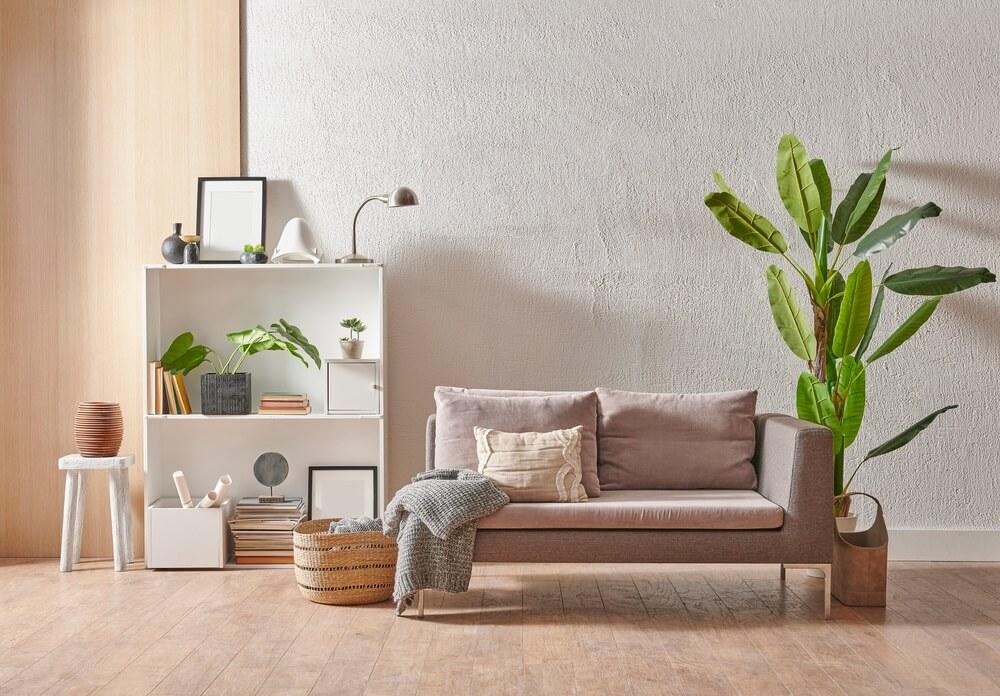 Planten geven sfeer én rust aan je interieur