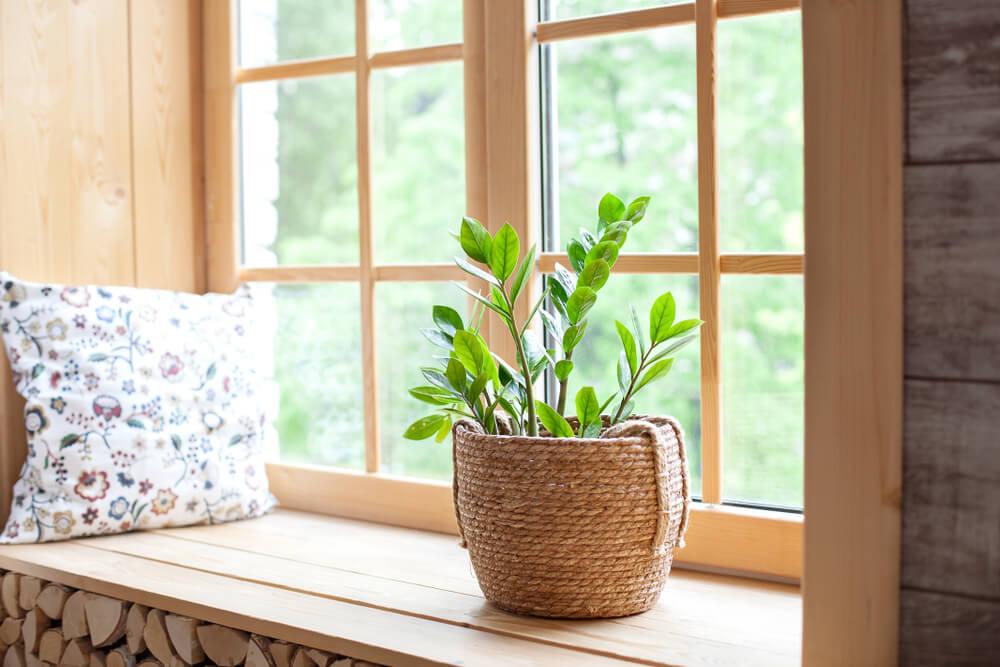 Wat zijn de leukste woonaccessoires voor de vensterbank? 20x Inspiratie + shop mee!
